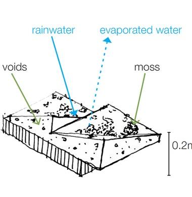 Betonnen dakpaneel basis voor groen dak