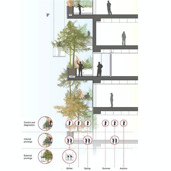 C Boeri Studio Bosco Verticale Planting scheme