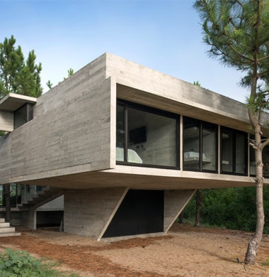 Dennen in beton