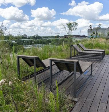 Beton drager voor biodiversiteit op groen dak